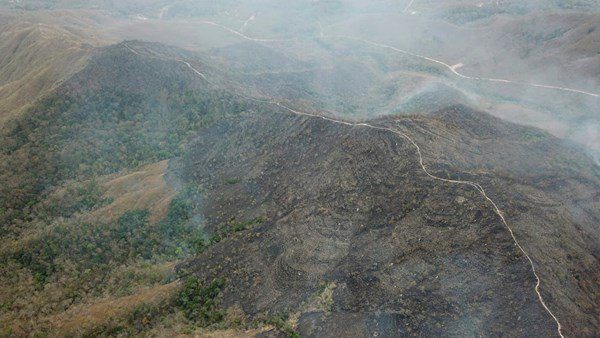 Brazil Amazon forest has been burning and military is sent to sort it out
