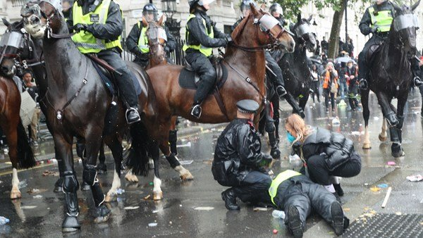 A horse run so through protest in Whitehall